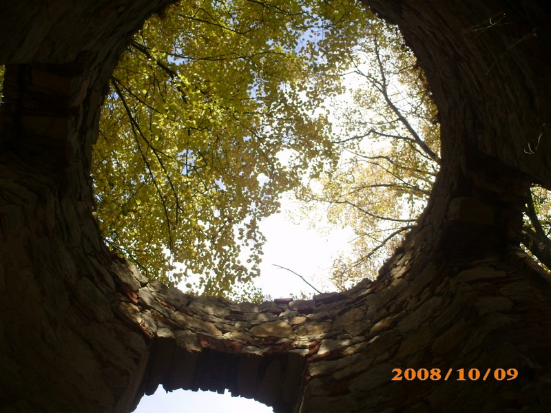 polen-div-herfst-periode-2008-006